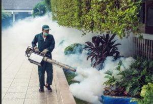 أفضل شركة رش المبيدات الحشرية