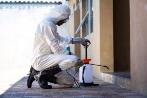 أفضل شركة مكافحة حشرات في الرياض