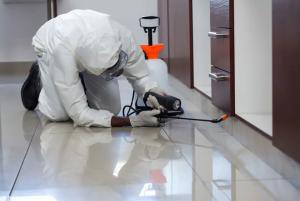شركة رش مبيدات حشرية في الرياض