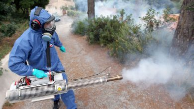 Photo of شركة لرش المبيدات الحشرية بالرياض