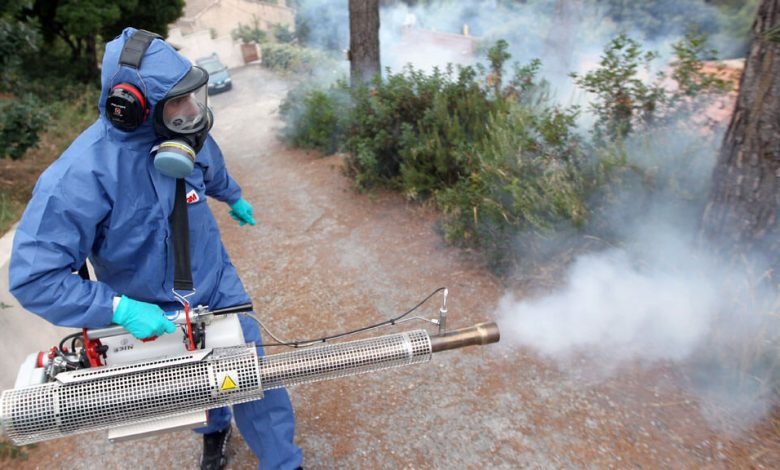 شركة لرش المبيدات الحشرية بالرياض